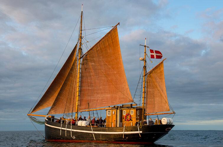 Castor med sejl på havet / © Bent Nygaard Larsen