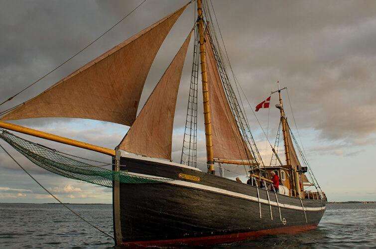 Vind i sejlene / © Bent Nygaard Larsen